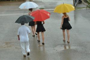 Podvečerní déšť otočil všechno vzhůru nohama